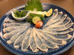 sashimi-ikan-buntal-fugu-sajian-khas-jepang.jpg