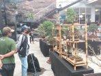 sleman-city-hall-gelar-pameran-bonsai-sebagai-wadah-berkarya-di-tengah-pandemi.jpg