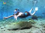 snorkeling-ponggok_20160429_192600.jpg