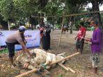 suasana-penyembelih-hewan-kurban-oleh-bmm-yogyakarta-melalui-program-qurban-prioritas.jpg