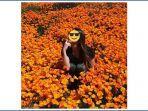 super-bloom-california_5.jpg