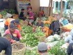 tak-bisa-jual-hasil-panenpetani-sayur-di-magelang-berikan-3-ton-sayuran-gratis-untuk-masyarakat.jpg