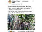 tangkapan-layar-postingan-warganet-tentang-motor-di-pepohonan-bambu.jpg