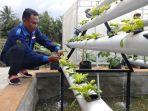 tugiyanto-sedang-merapikan-sayuran-budidaya-hidroponik-di-jogja-youth-farming.jpg