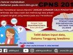 update-jumlah-pelamar-cpns-2019-dan-tips-bkn-cara-lengkapi-dokumen-persyaratan-cpns-2019-di-sscasn.jpg