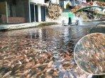 watergong-klaten-dulunya-sungai-penuh-sampah-kini-isinya-jutaan-ikan.jpg