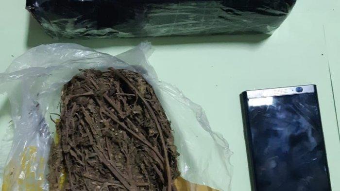 Ekspedisi Curigai Paket dari Medan Berisi Narkoba, Pemilik Paket Langsung Diciduk Polisi