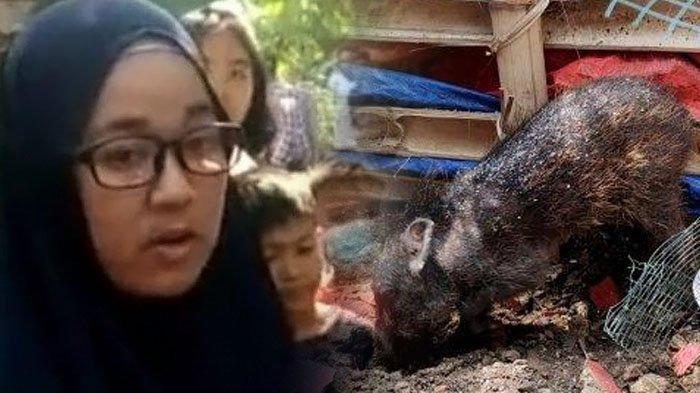Pengakuan Terbaru Bu Wati, Siap Dipenjara setelah Viral Tuding Tetangga Pakai Pesugihan Babi Ngepet