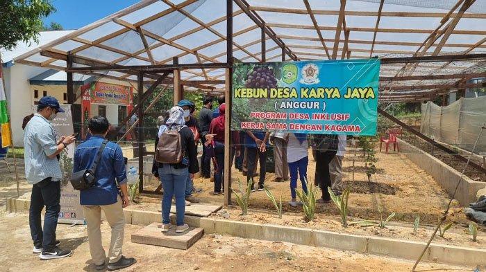 Rombongan pengurus pusat Kagama dan pengurus daerah Kaltim melihat budidaya tanaman buah anggur di Desa Karya Jaya, Kutai Kartanegara.