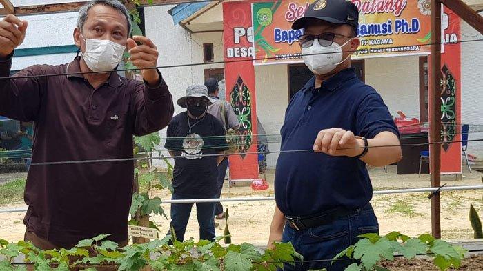 Kagama Menginisiasi Budidaya Buah Anggur di Desa Inklusif Karya Jaya Kutai Kartanegara