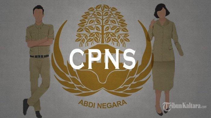 Formasi CPNS 2021 yang Masih Kosong dan Belum Diisi Pelamar, Simak Alur Pendaftarannya