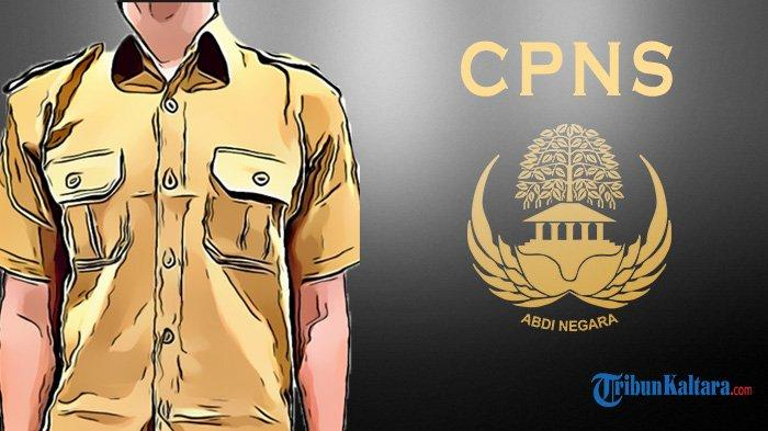 Pendaftaran CPNS Kaltara Berakhir Senin Hari Ini, Berikut Syarat dan Alur Seleksi CPNS 2021 Terbaru
