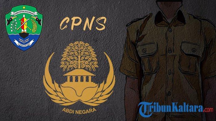 Update CPNS Kaltara dan PPPK 2021, Bulungan Usulkan 231 Formasi, Simak Syarat dan Alur Pendaftaran