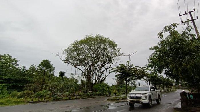 Prakiraan Cuaca Kaltara, Jumat 17 September 202, Tarakan Diprediksi Hujan Ringan Pagi dan Malam