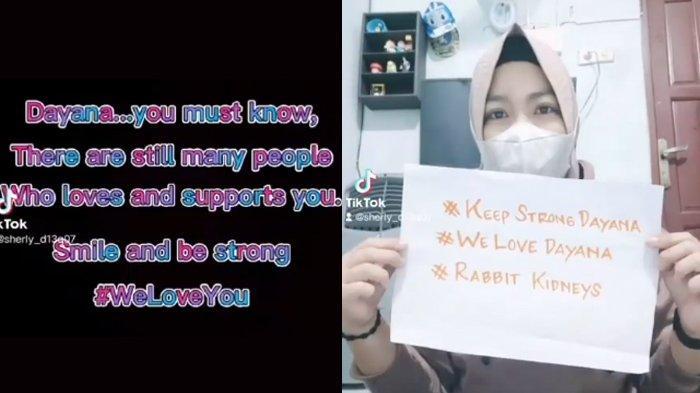 Dukungan fans di Indonesia untuk Dayana. (Kolase TribunKaltara.com Instagram / @demi.demik)