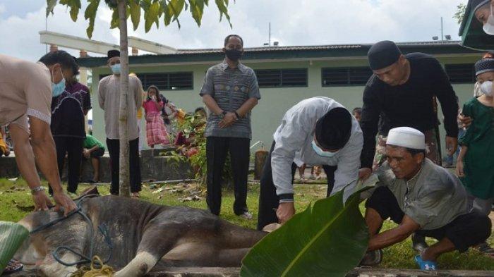 Kodim 0907/Tarakan Potong 6 Ekor Hewan Kurban, Dandim Berharap Daging Dinikmati Orang yang Berhak