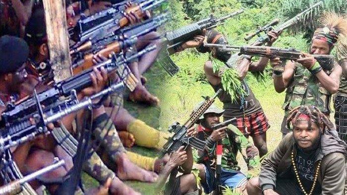 Jenderal Polisi Kantongi Peta Kekuatan KKB, TNI-Polri Punya Siasat Khusus Redam Separatis Papua