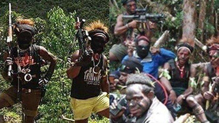 TERBONGKAR! Ini Jalur Masuk Senjata Canggih KKB Papua, Kelompok Teroris Punya Rute Rahasia 2 Negara