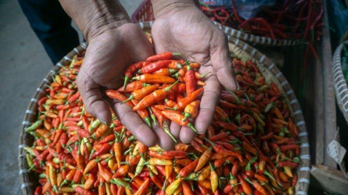 Terjadi kenaikan harga  pada komoditas cabai lokal pada H-5 lebaran di Pasar Induk Sangatta Utara Kabupaten Kutai Timur.