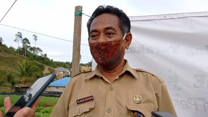 Upaya Penanaman Bawang Merah, Kepala Dinas Pertanian Tarakan Sebut BPTP Kaltim Siap Fasilitasi
