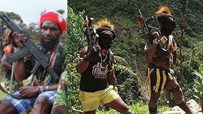 Gunakan SteyrAUGBuatanAustria, KKB Papua Tantang Adu Tempur TNI Secara Terbuka, Ini Jenis Senjata