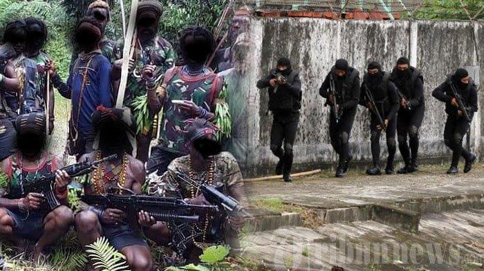 Benarkah Pasukan Elite TNI AL Denjaka Ikut Dieterjunkan Tumpas KKB Papua? Marinir Beri Penjelasan