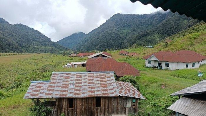 Nasib Warga Mappenduma, Sering Diancam KKB Papua, Tinggalkan Kampung hingga Pilih Hidup di Gunung