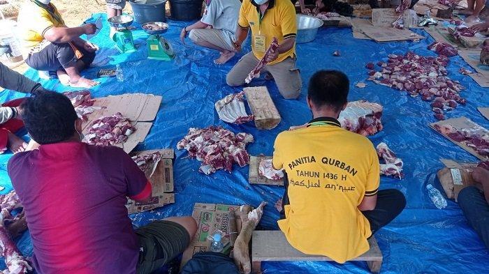Pelaksanaan Kurban hingga 13 Dzulhijjah, Panitia Malinau Kota Target Pembagian Daging Selesai Sehari