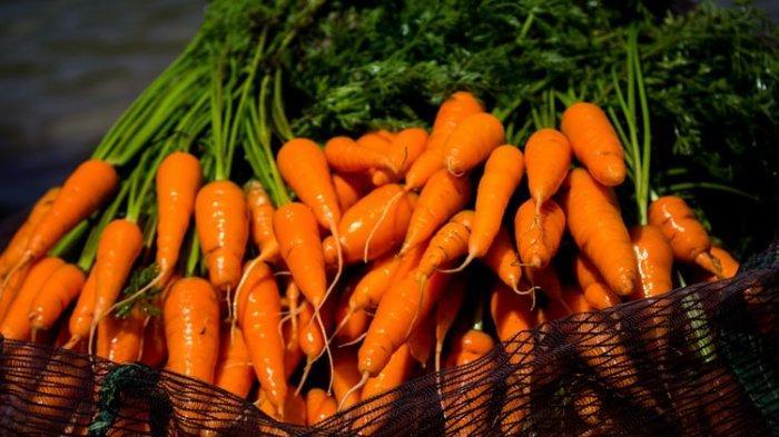 Termasuk Wortel, Simak 6 Jenis Makanan yang Baik untuk Detoksifikasi dan Bersihkan Paru-paru