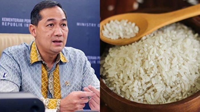 Alasan Impor 1 Juta Ton Beras ke Indonesia Masuk Akal? Mendag Muhammad Lutfi Sebut 3 Lembaga Negara
