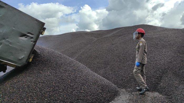 Perdana di 2021, Sebanyak 1.900 Ton Palm Kernel dari Wilayah Karantina Tarakan Diekspor ke Malaysia