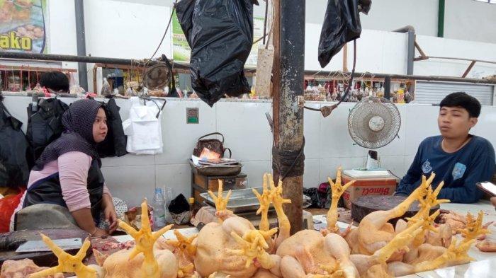 Harga Ayam Potong Di Tanjung Selor Kaltara Turun, Pedagang Sebut Stok Melimpah