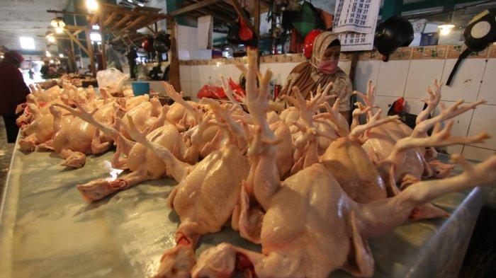 Jelang Lebaran 2021, Harga Ayam di Balikpapan Meroket Rp 55 Ribu Perekor