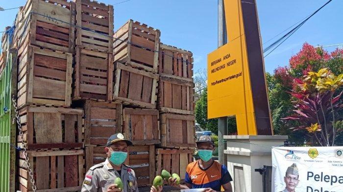 Karantina Tarakan Kawal Terus Ekspor di Perbatasan, 17 Ton Produk Hortikultura Diekspor ke Malaysia
