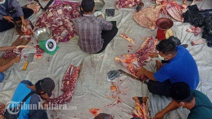 Panitia Islamic Centre Malinau Potong 9 Ekor Hewan Kurban Idul Adha, Berikut Metode Pembagiannya