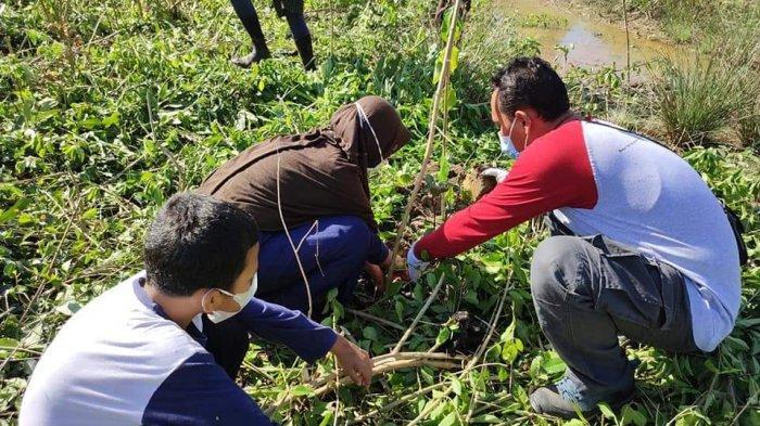 Menannam 2.021 batang mangrove dalam rangka Hari Keanekaragaman Hayati Internasional 2021, di Park Mangrove Saleba.