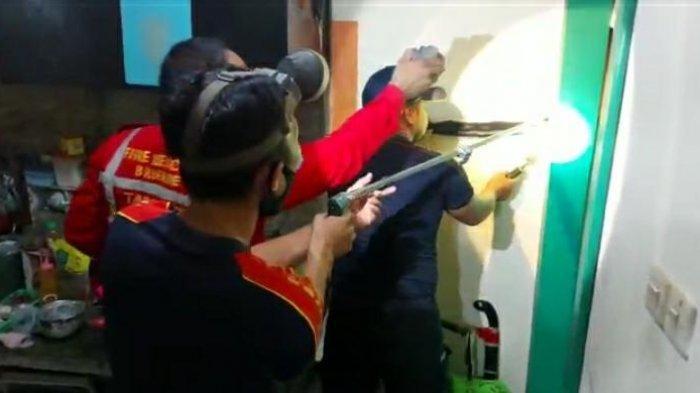Ular Kobra dengan Panjang 1,2 Meter Masuk ke Rumah Warga, Petugas Damkar Tarakan Turun Tangan