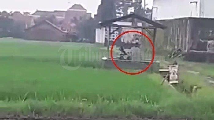 VIDEO VIRAL - Tangkapan layar video viral perempuan dan pria melakukan tindakan tak senonoh di gubuk di tengah sawah di Pekalongan.