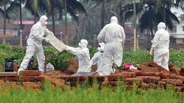 WHO Laporkan Virus selain Covid-19 Bisa Picu Pandemi, Apa Itu Virus Nipah? Lebih Ganas dari Corona