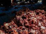 daging-kurban-idul-adha-20072021.jpg