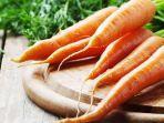 ilustrasi-wortel-sayuran-sehat.jpg