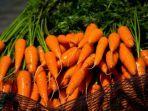 manfaat-wortel-untuk-kesehatan-paru-paru.jpg