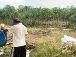 seorang-petani-tengah-mengaplikasikan-pupuk-organik-cair-1612021.jpg