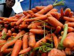 wortel-24062021.jpg