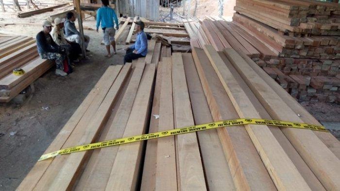 Pemilik Bansaw Ini Diamankan karena Ilegal Logging