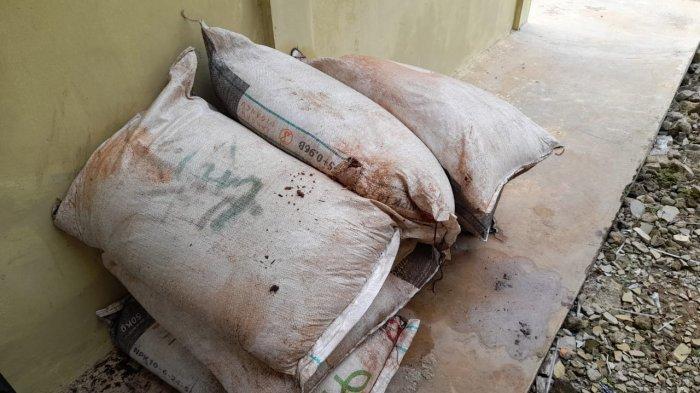 Curi Pupuk Sawit, Warga Kotim Ini Tertangkap Tangan Oleh Satpam Perusahaan Sawit di Kabupaten Kotim