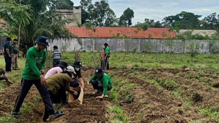 BRGM Gandeng PGI Gelar Sekolah Lapang Petani Gambut di Kalteng