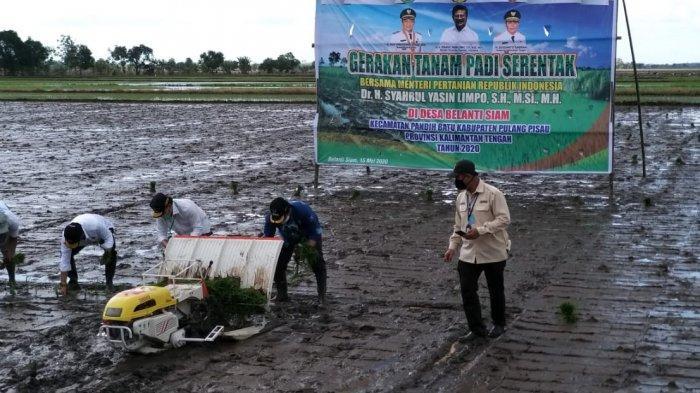 Kembangkan Food Estate di Eks PLG, PUPR Akan Rehabilitasi 28 Ribu Hektare Jaringan Irigasi