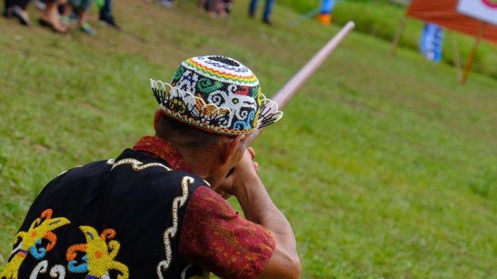 Sumpit Dilaburi Kunyung, Senjata Tradisional Suku Dayak yang Mematikan Saat Perang