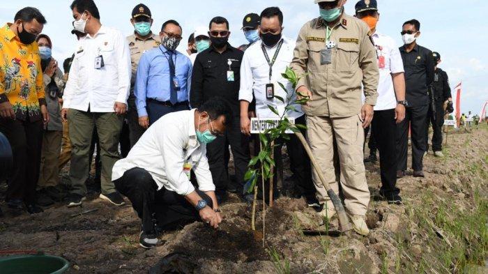 Tanam Perdana Program Food Estate di Desa Tahai Baru Kalteng Mulai Dilaksanakan